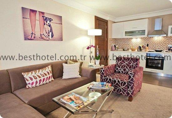 Apart Hotel Best: Executive Apart Livingroom