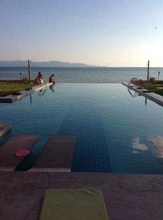 Le Divine Comedie: Great pool !