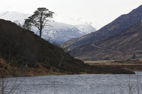 Beauly, UK: Glen Strathfarrar March 2013