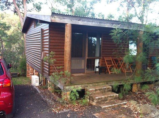 Ferndale Retreat: My cabin