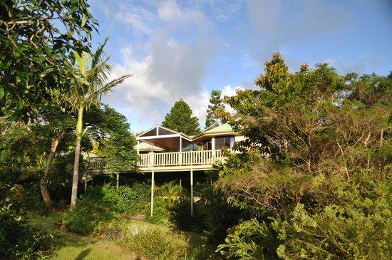 Avocado Grove B&B: Looking at residence nestled amonst trees