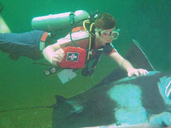 Manta Lodge: Swim with the Mantas