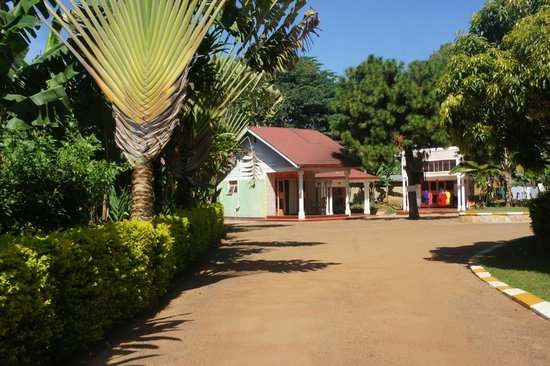 Entebbe Backpackers: Lovely!