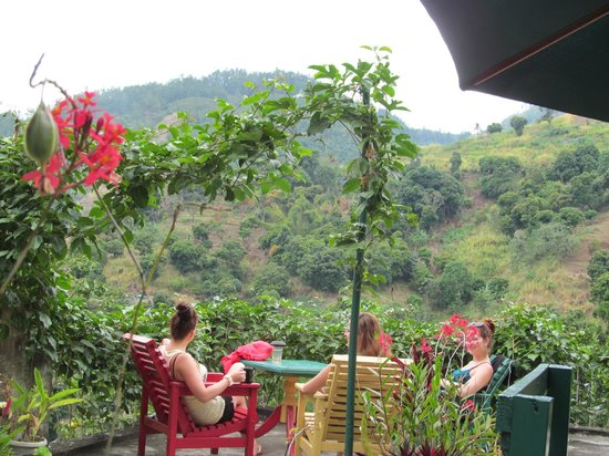 Prince Valley Guest House : The beautiful view
