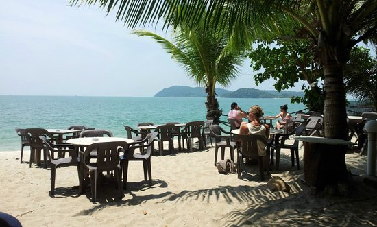 Oasis Bar and Restaurant : Dining with an exotic view -Oasis