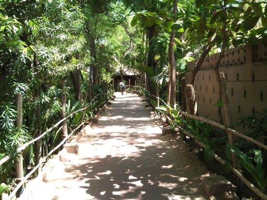 Vishala: On your way in