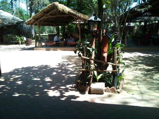 Vishala: inside