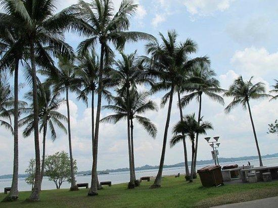 CherryLoft Resorts: The Pasir Ris Beach