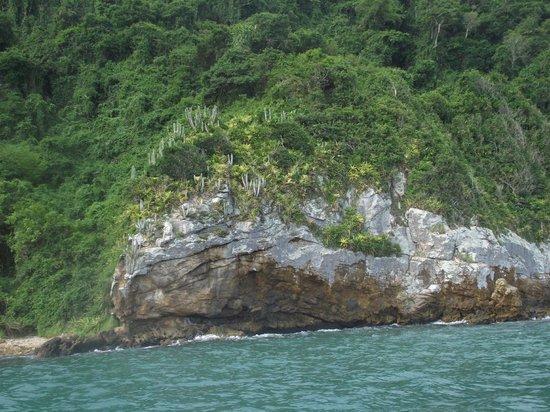Pousada Alcobara: Ilha