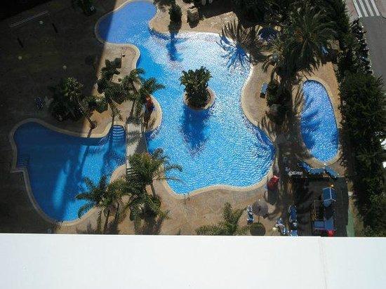 Hotel Flamingo Oasis: balcolny pool view