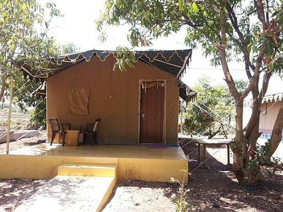 Gir Jungle Lodge : Tent view