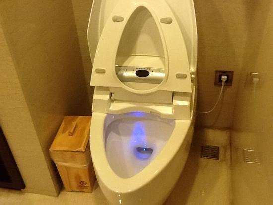 S-aura Hotel: electric toliet. english instructions are on the wall to the right