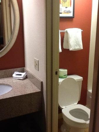 Red Roof Inn Lansing West: bathroom