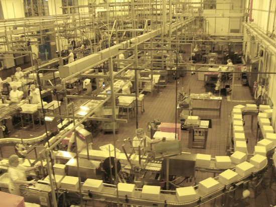 Tillamook Cheese Factory: Another shot of the production floor inside the cheese factory.