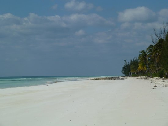 Chad4Nature Tours - Private Tours: beach