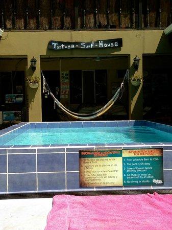 Hotel Perico Azul: pool area
