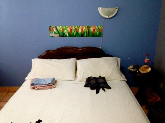 Hotel Perico Azul: Comfortable room