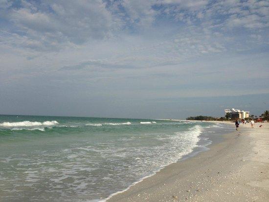 view on lido key beach picture of holiday inn sarasota lido rh tripadvisor co za