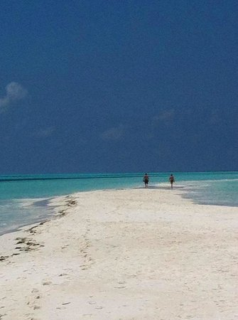 Kuredu Island Resort & Spa: THE VERY TIP OF THE ISLAND