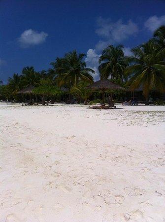 Kuredu Island Resort & Spa: THE BEACH