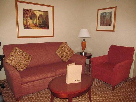 Hilton Garden Inn Victorville: couch