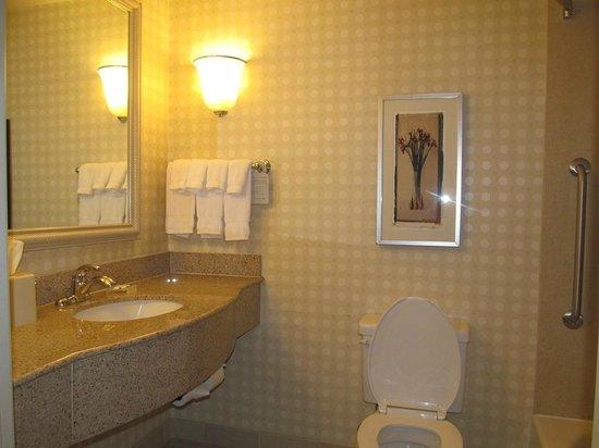 Hilton Garden Inn Victorville: bathroom
