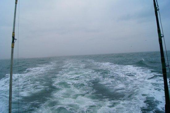 Dolphin dock deep sea fishing trip shrimp boat we passed for Port aransas deep sea fishing