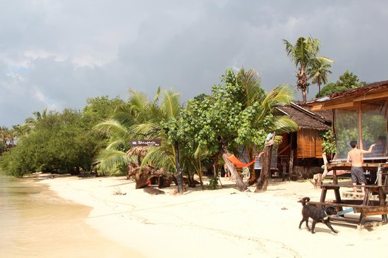 Shambhala Bungalow Village: Beach
