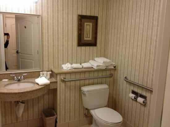 Hilton Garden Inn Boise Spectrum : Bathroom