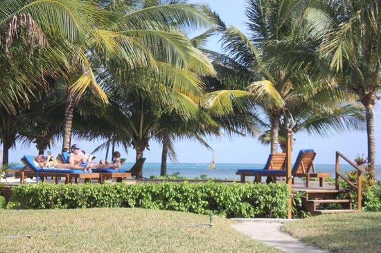 Caribbean Villas Hotel: Pool Side