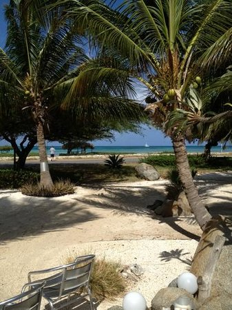 Beach House Aruba Apartments: just walk across the road to the water