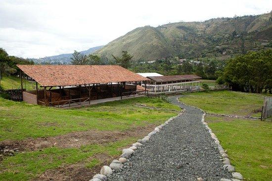 Hacienda Uzhupud: Senderos