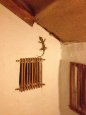 Koh Tao Cabana: Lizard in room