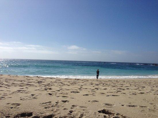 Carmel Mission Inn: Beach