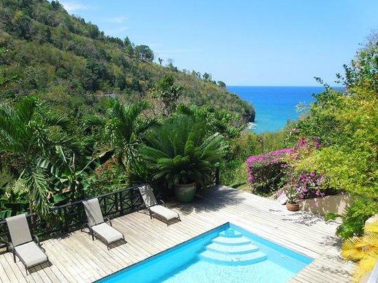 Villa Pomme d'Amour: Pool
