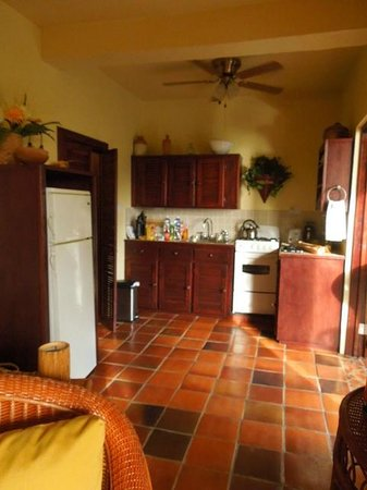 Villa Pomme d'Amour: Kitchen with all the essentials