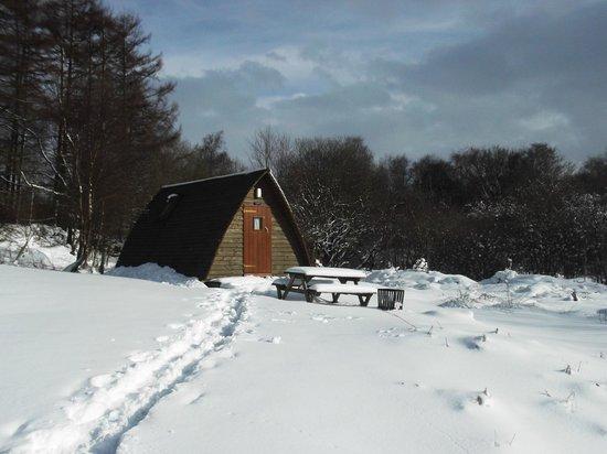 Gorsebank Camping Village: Nith