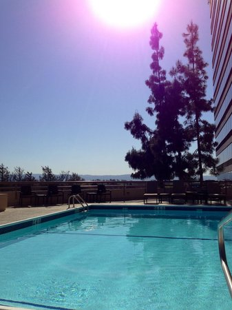 Crowne Plaza San Jose - Silicon Valley : Poolside