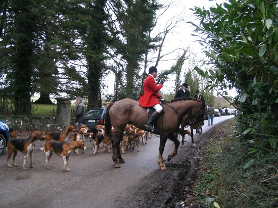 Glenlohane: horses and hounds of duhallow hunt meeting right here!!