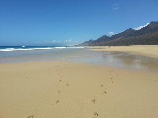 Panorama - Picture of Playa de Cofete, Morro del Jable - TripAdvisor
