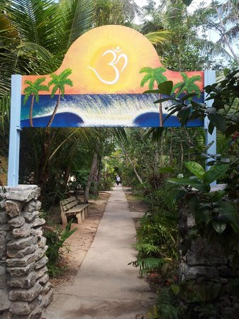 Sivananda Ashram Yoga Retreat : One of the paths on the grounds