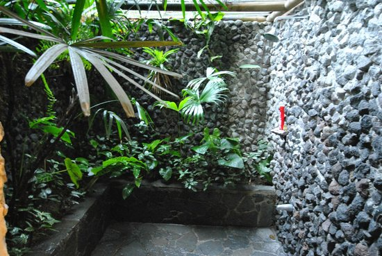 Lost Iguana Resort & Spa: Rain Forest Shower