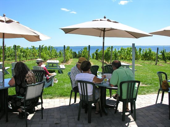 County Cider Company & Estate Winery: Licensed patio overlooking Prince Edward Bay