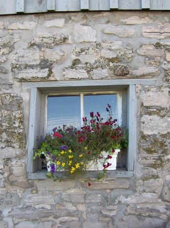 County Cider Company & Estate Winery: window box at tasting room