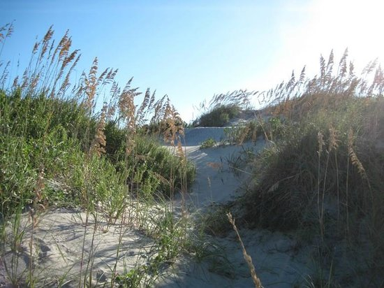 Cape Hatteras National Seashore: Path to Beach Over Dune