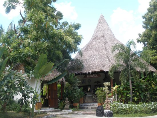 Loyfa Natural Resort: recepcion