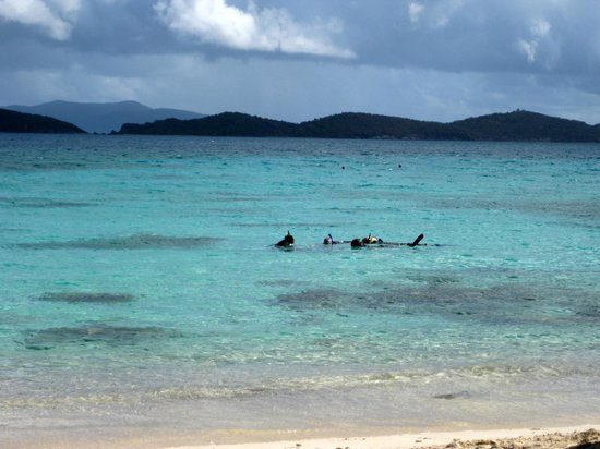 Sapphire Beach: De mørke pletter er koralrev