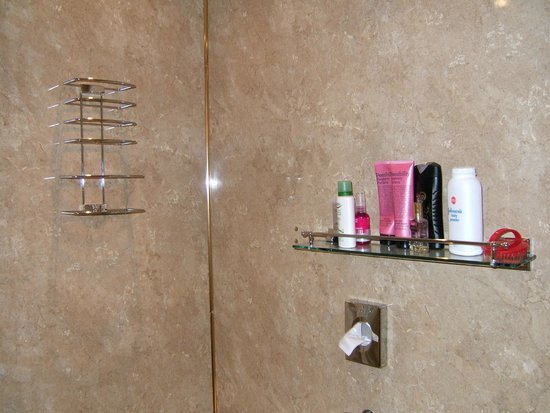 Streonshalh B&B: Toiletries shelf