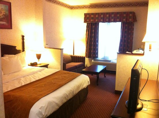 Comfort Suites Hotel - Lansing: king suite that I had