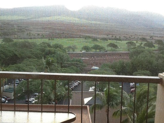 Hyatt Regency Maui Resort and Spa: Ocean view room????